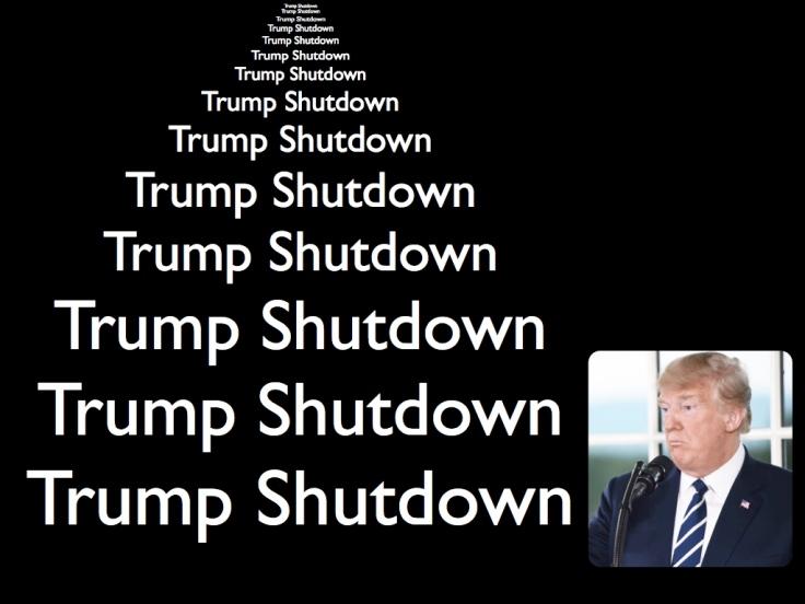 Trump Shutdown pic.001